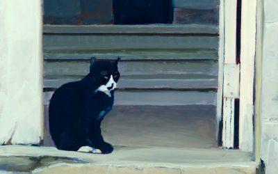 Cuba Cat