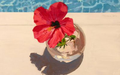 Hibiscus and Pool